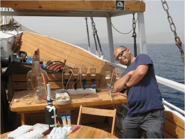 מחקר במפרץ אילת - החוג למדעי הסביבה, האוניברסיטה העברית בירושלים