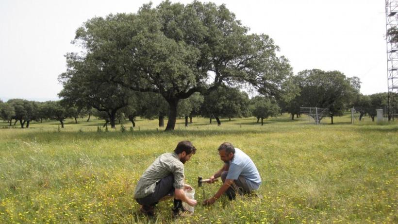 חוקרי החוג בעבודת שטח